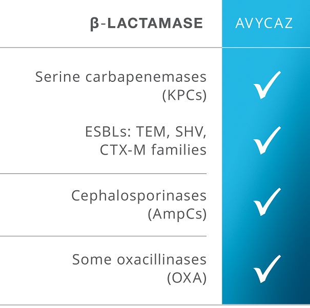 B-Lactamase inhibits both KPC and AmpCs